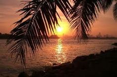 beaches, planet, miamibeach, beach sunsets, weight loss, miami beach, twitter backgrounds, places, palms