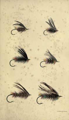 Kinmont Willie, The Lady of Mertoun, Toppy, Michael Scott, Meg with the Muckle Mouth  Meg in her Braws, William Scrope - Days and Nights of Salmon Fishing in the Tweed 1843