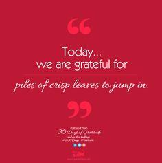 Today, we are grateful for piles of crisp leaves to jump in. #LH30Days #Gratitude #Laurenshope #Laurenshopeid