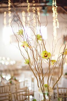 Only one.. pic of the LONG branches with attached flowers for centerpieces