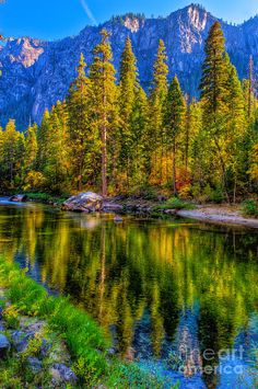 ✮ Reflections on the Merced River - Yosemite National Park