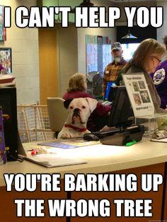 Unhelpful Dog Receptionist