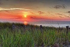 Cape Cod. Beautiful.
