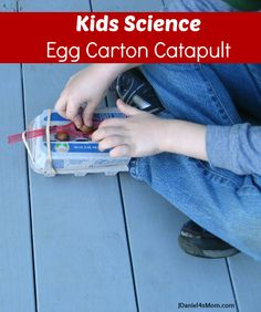Kids Science: Egg Carton Catapult