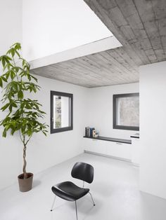 Rizza House / Studio Inches Architettura grey walls concrete ficas black leather chair