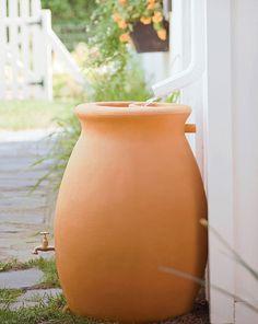 Stylish Rain-Barrel