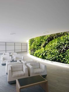 Love the greenery at the Qantas first class lounges in SYD + MEL
