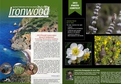SBBG Ironwood Fall 2013 newsletter - featuring the 2013 SBBG Photo Contest winners!