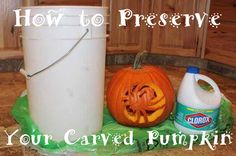 After you scoop out and carve your pumpkin, dip it in a large container of bleach and water (use a 1 tsp:1 gal mix). The bleach will kill bacteria and help your pumpkin stay fresh longer. Once completely dry, (drain upside down), add 2 tablespoon of vinegar and 1 teaspoon of lemon juice to a quart of water. Brush this solution onto your pumpkin to keep it looking fresh for weeks.""