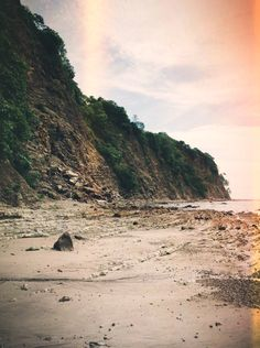 Costa Rica Diary: Final Reflections | Free People Blog #freepeople