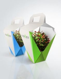 Flower Garden - packaging for flowers by Milena Włodarczyk