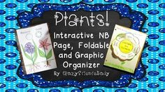 Need something new for plants? Here are some crafty, hands-on materials to help your students learn the parts/functions of the leaf, visualize the groups of plants, and understand the differences between monocots and dicots.