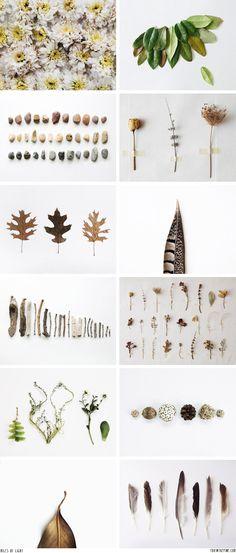 Natury things :)
