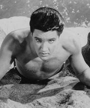 """""""Fun in Acapulco""""  1963, Paramount  Partial cast list: Elvis Presley, Ursula Andress, Elsa Cardenas, Paul Lukas, Larry Domasin, Alejandro Rey."""