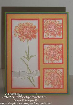 Bright Field Flowers by shoogendoorn - Cards and Paper Crafts at Splitcoaststampers