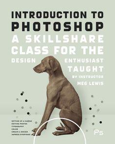 Basics of Photoshop: Fundamentals for Beginners - Skillshare