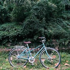This beautiful gloomy Friday marks the first day of the #LinusDCDiary. Stay tuned for more DC adventures with this Sky Blue Mixte kindly provided by the good folks over at @bicycleSPACE.  (at Rock Creek Park Bike Trail)