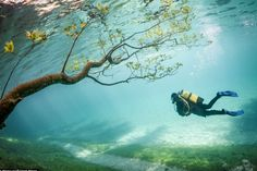 The strangest natural lake phenomena in the world