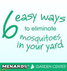 6 easy ways to eliminate mosquitoes in your yard. Read full article: http://www.menards.com/main/c-14326.htm?utm_source=pinterest&utm_medium=social&utm_content=mosquitoes&utm_campaign=gardencenter
