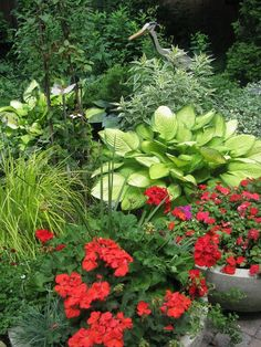 Plants to Use for Adding Texture in Your Garden