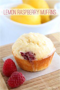 Lemon Raspberry Muffins - these moist, fruity muffins with a sweet lemon glaze are great for breakfast or brunch! Little bites of sunshine!