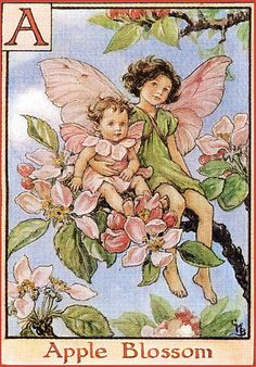 Apple Blossom Flower Fairy Vintage Print by Cicely Mary Barker.