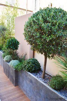La terrasse d'un showroom « Slowgarden / Design Terrasses et Jardins