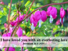 Jeremiah 31:3 (NIV) I have loved you with an everlasting love.