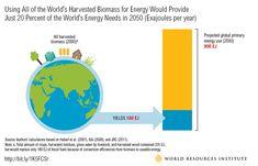 Biofuels: Wrong Dire