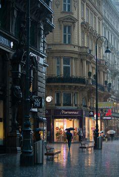 Rain in Vienna,Austria