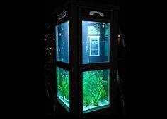 aquarium in phone booth