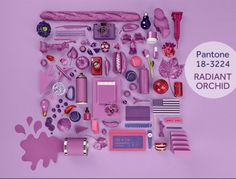 @Lola McGinnis COLOR Radiant Orchid - Color of 2014 colour, radiant orchid, radiantorchid, panton color, 2014 color, colors, year 2014, pantone, color 2014