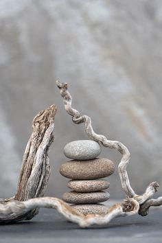 *Sticks and Stones