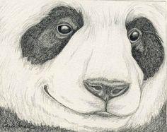 Baby Panda Drawing In Pencil Etsy com  panda bear originalPanda Drawing In Pencil