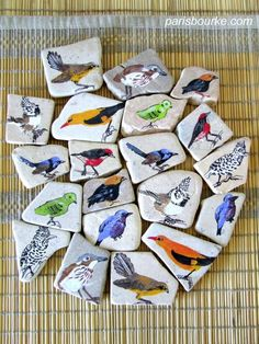 Amazing painted birds on rocks matching game. Wow, pretty