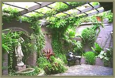 Courtyard Gardens on Pinterest