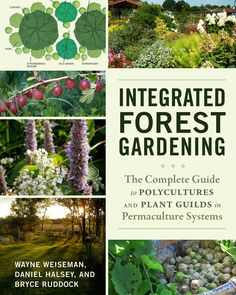 Integrated Forest Gardening: The Complete Guide to Polycultures and Plant Guilds in Permaculture Systems - See more at: http://www.chelseagreen.com/bookstore/item/integrated_forest_gardening:paperback#sthash.W5iqrnk7.dpuf