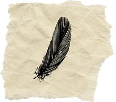 feather stamp on etsy, which i am currently trying to come up with a use for to justify the purchase.