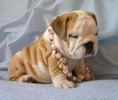 Wrinkles and Pearls