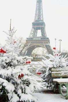 Christmas in Paris.....