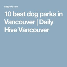10 best dog parks in