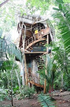 dream, latin america, fairy houses, tree houses, costa rica, trees, nest treehous, place, treehous vacat