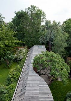 Tree House by 6a Architects