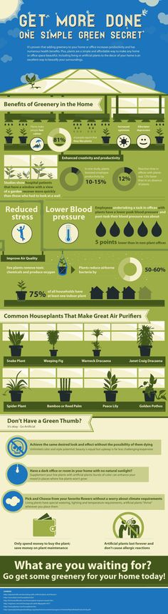 Benefits of greenery in the home