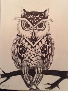 The Owl - his is an