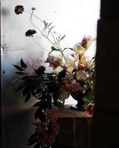 Bearded Iris arrangement // Sarah Ryhanen, via Flickr