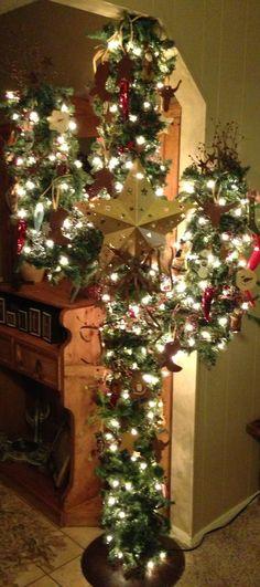christma cactus, cactus christma, christma tree, christmas trees