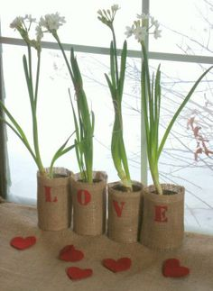 Valentine Tin Can Flower Pots