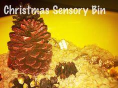 Christmas Themed Sensory Bins For Sensory Processing Disorder