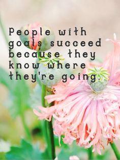Goals = success